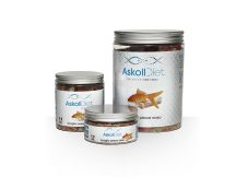 Askoll Diet mangime pesce rosso scaglie