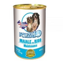 Forza 10 Dog Adult Maintenance maiale riso 400gr